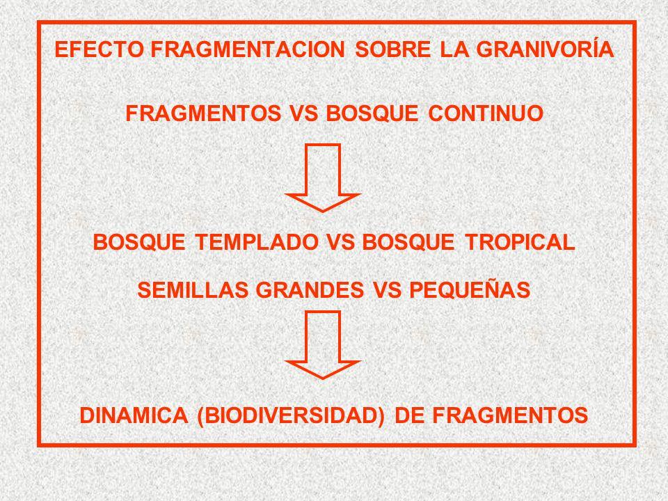 EFECTO FRAGMENTACION SOBRE LA GRANIVORÍA FRAGMENTOS VS BOSQUE CONTINUO BOSQUE TEMPLADO VS BOSQUE TROPICAL SEMILLAS GRANDES VS PEQUEÑAS DINAMICA (BIODIVERSIDAD) DE FRAGMENTOS