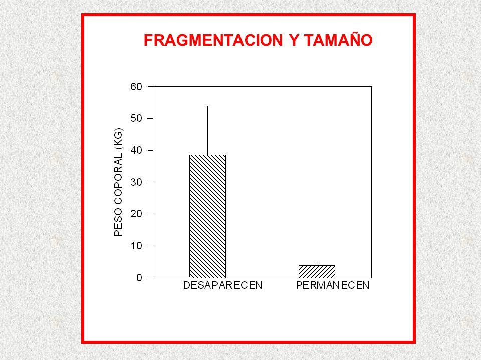 FRAGMENTACION Y TAMAÑO