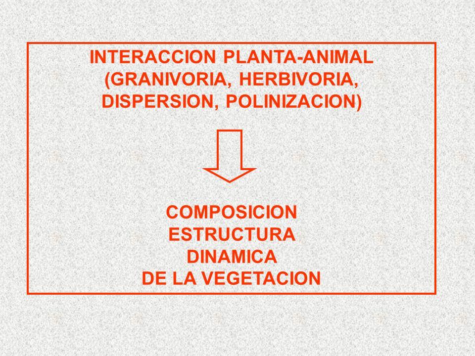 GERMINACION Maqui plántulas bosque 0% vs fragmentos 16% germinación bosque 0% vs fragmentos 11%