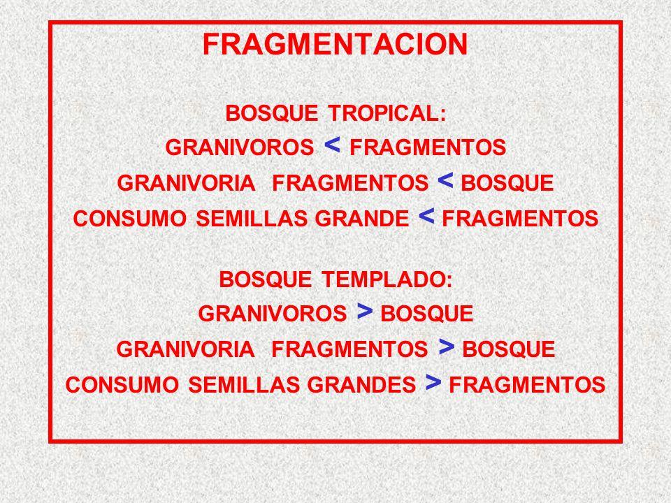 FRAGMENTACION BOSQUE TROPICAL: GRANIVOROS < FRAGMENTOS GRANIVORIA FRAGMENTOS < BOSQUE CONSUMO SEMILLAS GRANDE < FRAGMENTOS BOSQUE TEMPLADO: GRANIVOROS > BOSQUE GRANIVORIA FRAGMENTOS > BOSQUE CONSUMO SEMILLAS GRANDES > FRAGMENTOS