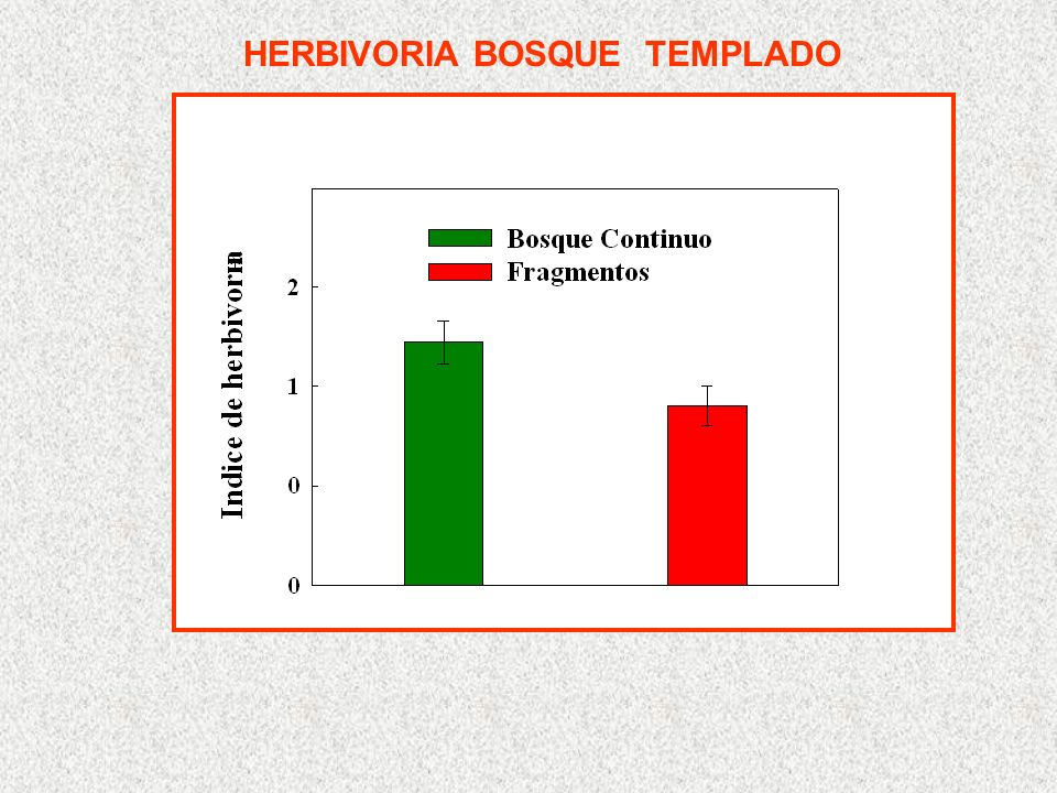 HERBIVORIA BOSQUE TEMPLADO