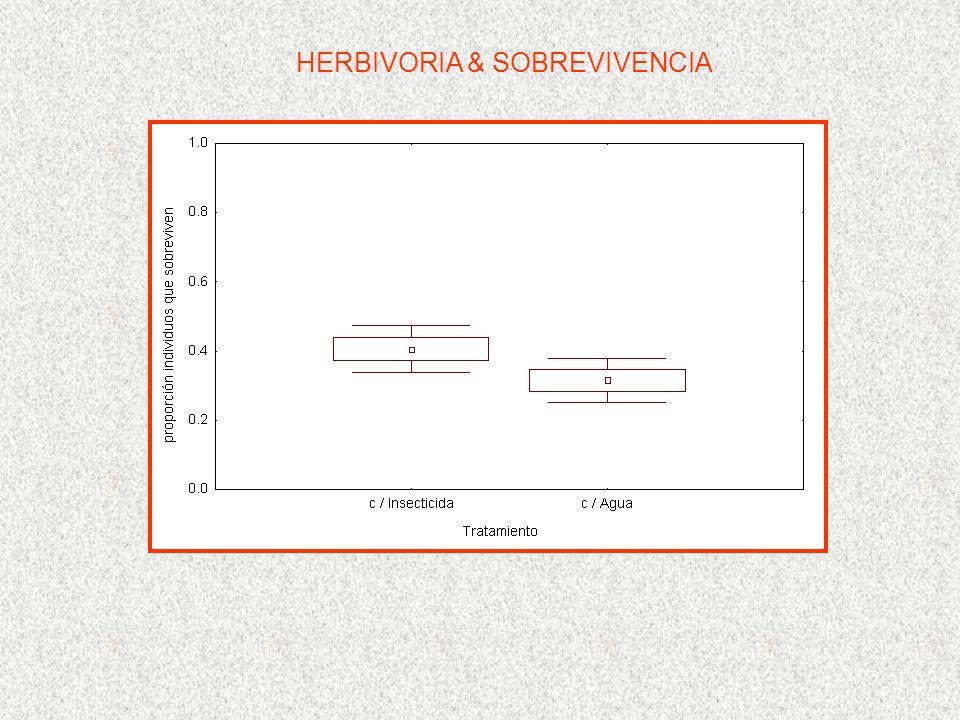 HERBIVORIA & SOBREVIVENCIA