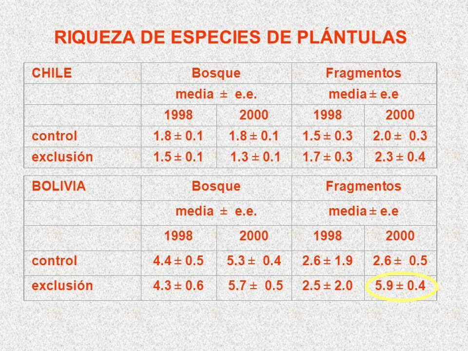 RIQUEZA DE ESPECIES DE PLÁNTULAS CHILEBosqueFragmentos media ± e.e.media ± e.e 1998200019982000 control1.8 ± 0.1 1.5 ± 0.32.0 ± 0.3 exclusión1.5 ± 0.1 1.3 ± 0.11.7 ± 0.32.3 ± 0.4 BOLIVIABosqueFragmentos media ± e.e.media ± e.e 1998200019982000 control4.4 ± 0.55.3 ± 0.42.6 ± 1.92.6 ± 0.5 exclusión4.3 ± 0.6 5.7 ± 0.52.5 ± 2.05.9 ± 0.4