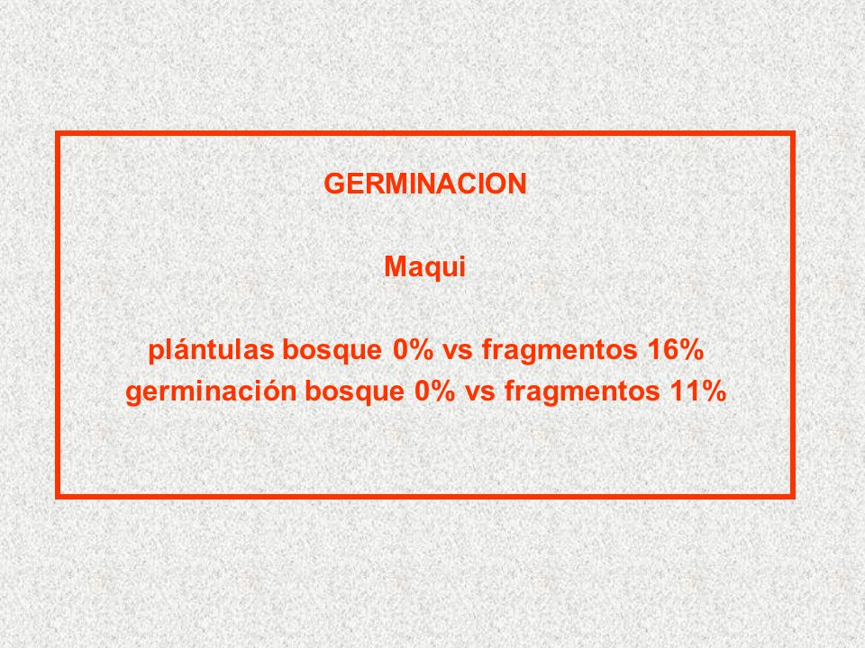GERMINACION Maqui plántulas bosque 0% vs fragmentos 16% germinación bosque 0% vs fragmentos 11%