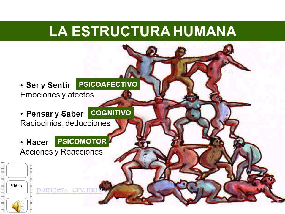 Analice sus Dimensiones Humanas Espiritual Intelectual Emocional Ética Espiritual Intelectual Emocional Ética Profesional Social Económica Física Profesional Social Económica Física La consigna Video