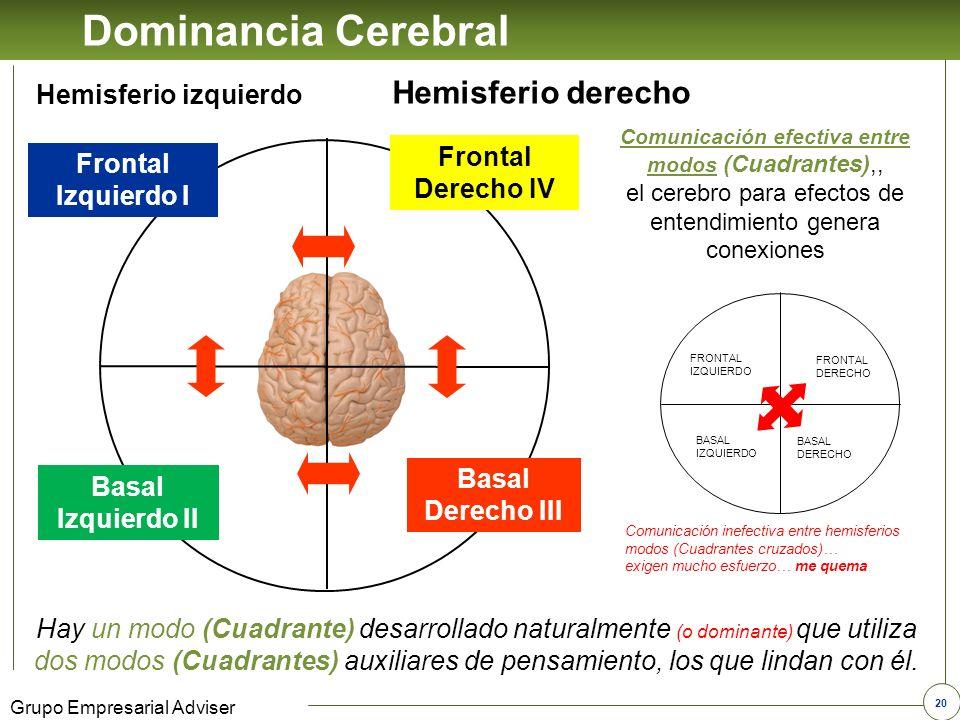 19 Grupo Empresarial Adviser Dominancia Cerebral Parte anterior del cerebro Parte posterior del cerebro Hemisferio izquierdo Hemisferio derecho Frontal Derecho IV Basal Derecho III Frontal Izquierdo I Basal Izquierdo II