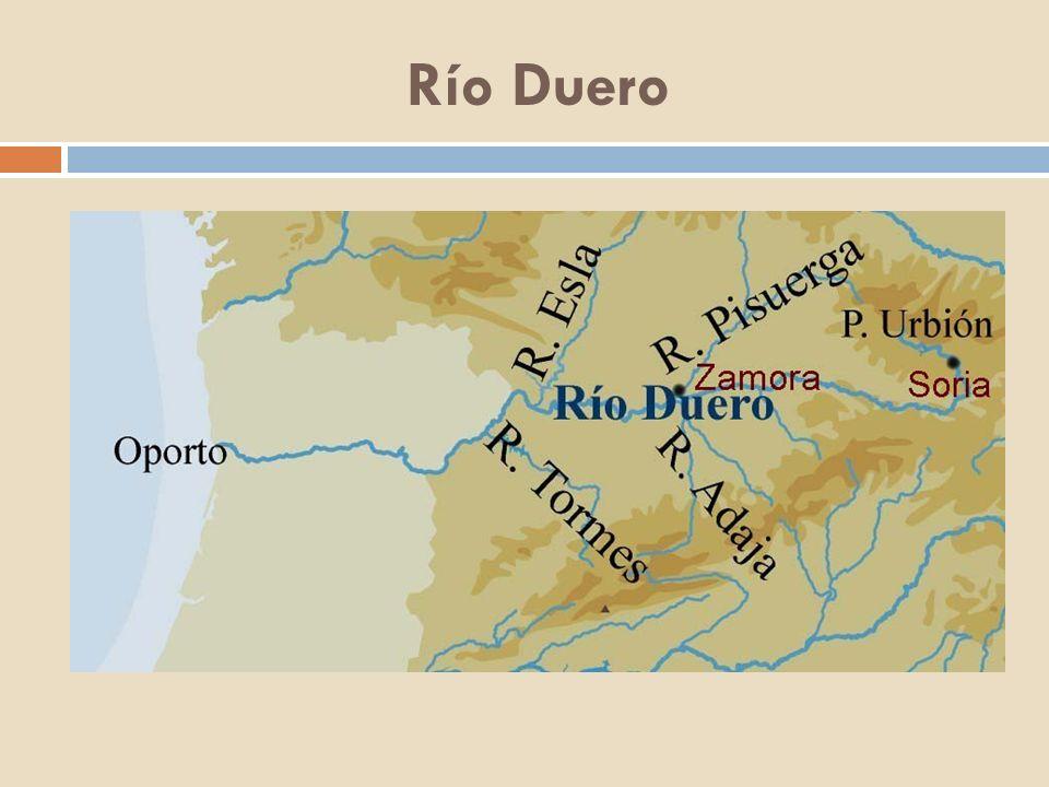 Río Bidasoa Nace en el pico Astaté, cerca del valle de Baztán en los Pirineos y desemboca en la bahía de Txingudi en el mar Cantábrico