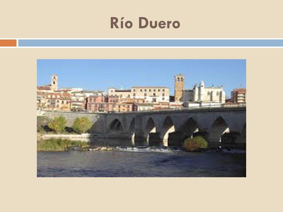 Río Nervión Nace en Peña de Orduña, Sierra de Garobel, en el límite de las provincias de Burgos y Álava.
