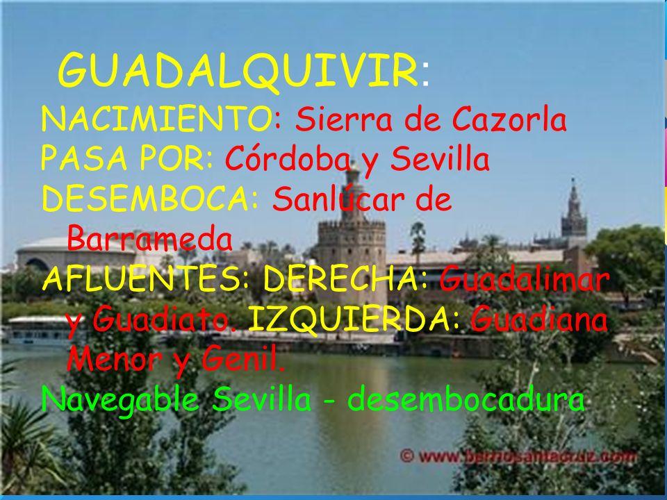 GUADALQUIVIR : NACIMIENTO: Sierra de Cazorla PASA POR: Córdoba y Sevilla DESEMBOCA: Sanlúcar de Barrameda AFLUENTES: DERECHA: Guadalimar y Guadiato. I