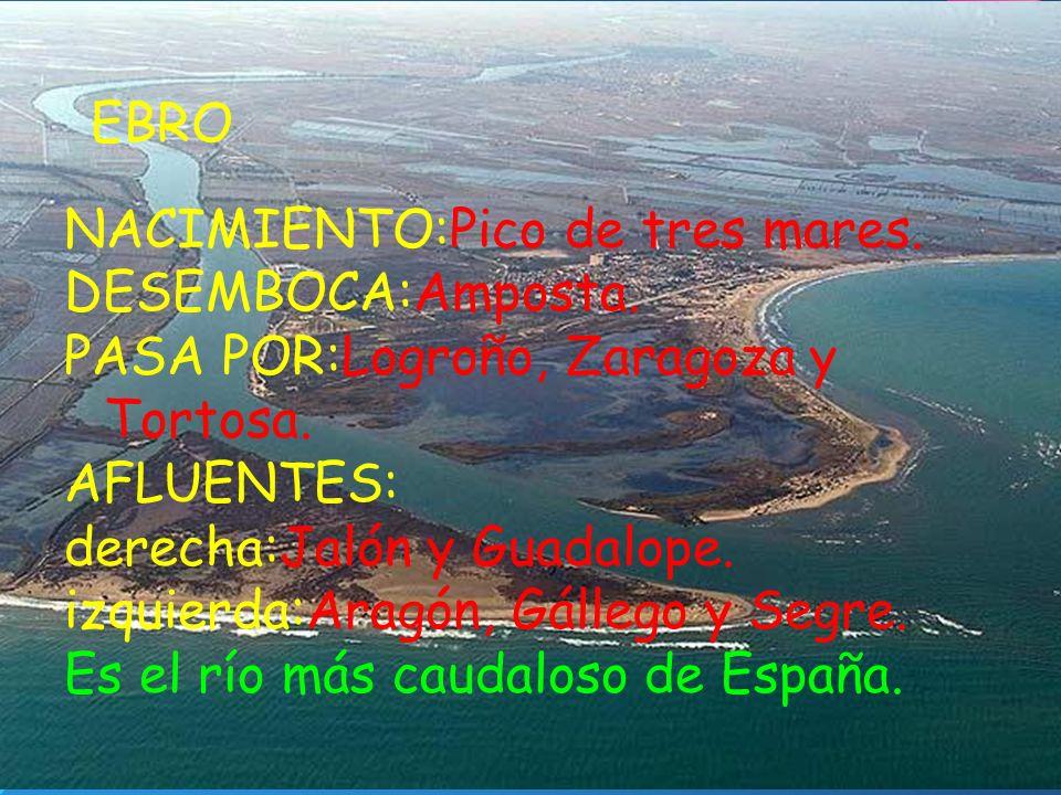 EBRO NACIMIENTO:Pico de tres mares. DESEMBOCA:Amposta. PASA POR:Logroño, Zaragoza y Tortosa. AFLUENTES: derecha:Jalón y Guadalope. izquierda:Aragón, G