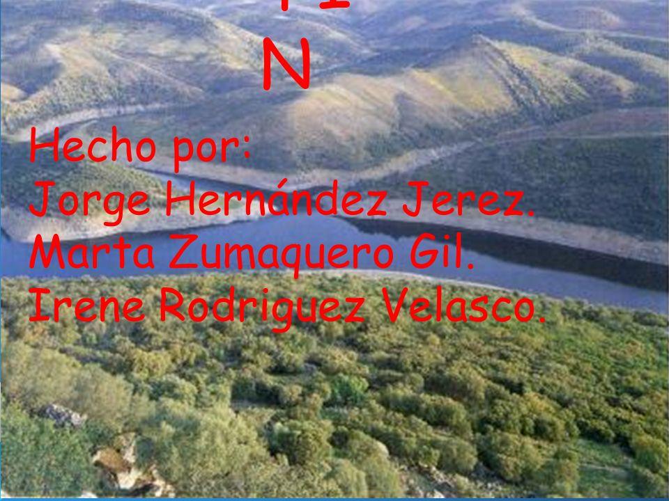 FI N Hecho por: Jorge Hernández Jerez. Marta Zumaquero Gil. Irene Rodriguez Velasco.