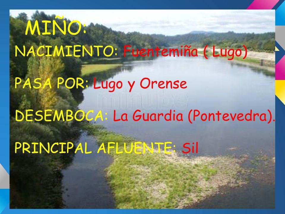 MIÑO: NACIMIENTO: Fuentemiña ( Lugo) PASA POR: Lugo y Orense DESEMBOCA: La Guardia (Pontevedra). PRINCIPAL AFLUENTE: Sil