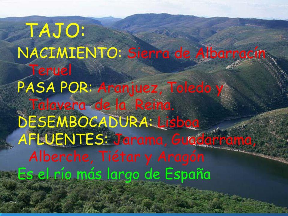 TAJO: NACIMIENTO: Sierra de Albarracín Teruel PASA POR: Aranjuez, Toledo y Talavera de la Reina. DESEMBOCADURA: Lisboa AFLUENTES: Jarama, Guadarrama,