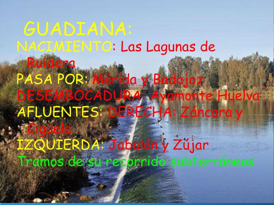 GUADIANA: NACIMIENTO: Las Lagunas de Ruidera PASA POR: Mérida y Badajoz DESEMBOCADURA: Ayamonte Huelva AFLUENTES: DERECHA: Záncara y Cigüela IZQUIERDA