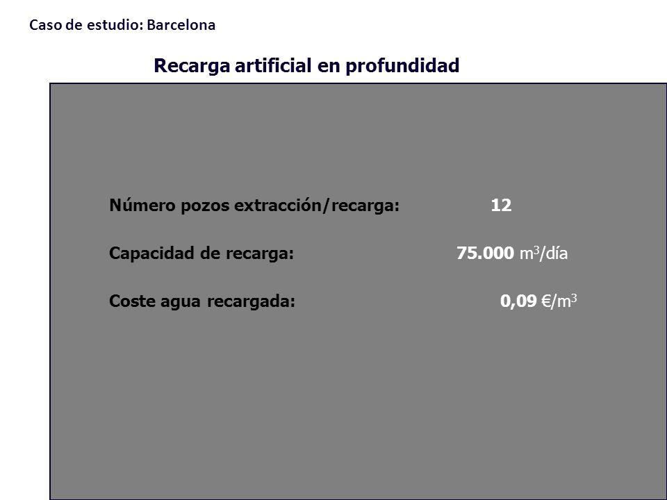 Número pozos extracción/recarga: 12 Capacidad de recarga:75.000 m 3 /día Coste agua recargada: 0,09 /m 3 Recarga artificial en profundidad Caso de est