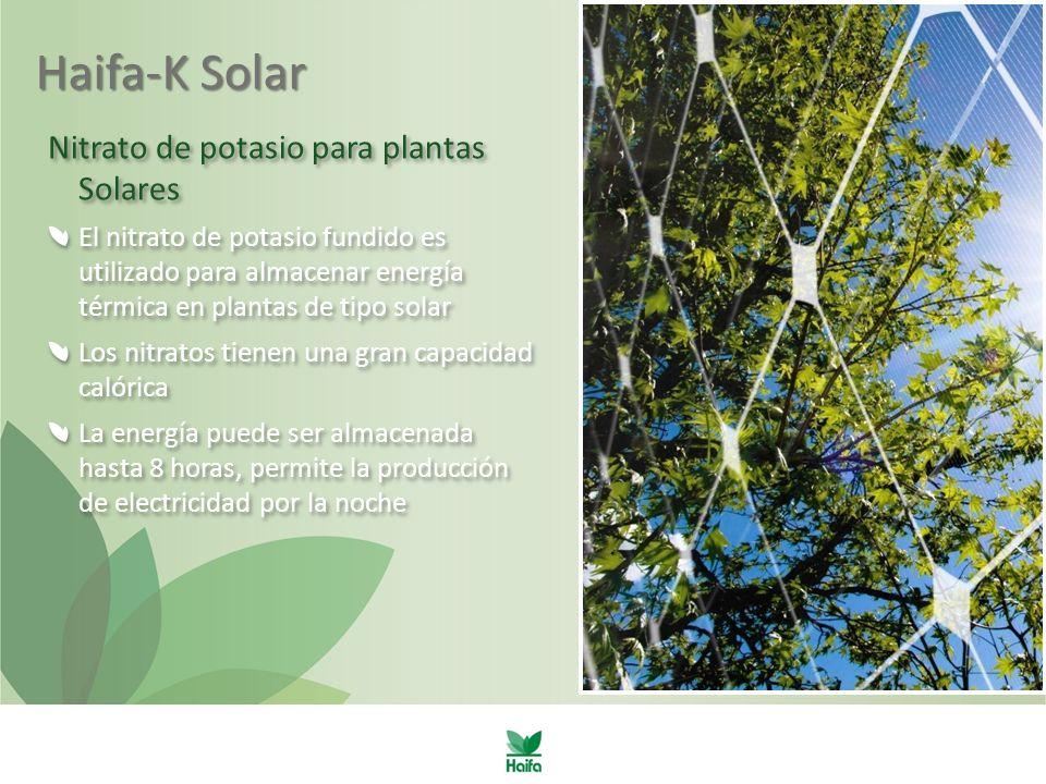 Haifa-K Solar Nitrato de potasio para plantas Solares El nitrato de potasio fundido es utilizado para almacenar energía térmica en plantas de tipo solar Los nitratos tienen una gran capacidad calórica La energía puede ser almacenada hasta 8 horas, permite la producción de electricidad por la noche Nitrato de potasio para plantas Solares El nitrato de potasio fundido es utilizado para almacenar energía térmica en plantas de tipo solar Los nitratos tienen una gran capacidad calórica La energía puede ser almacenada hasta 8 horas, permite la producción de electricidad por la noche