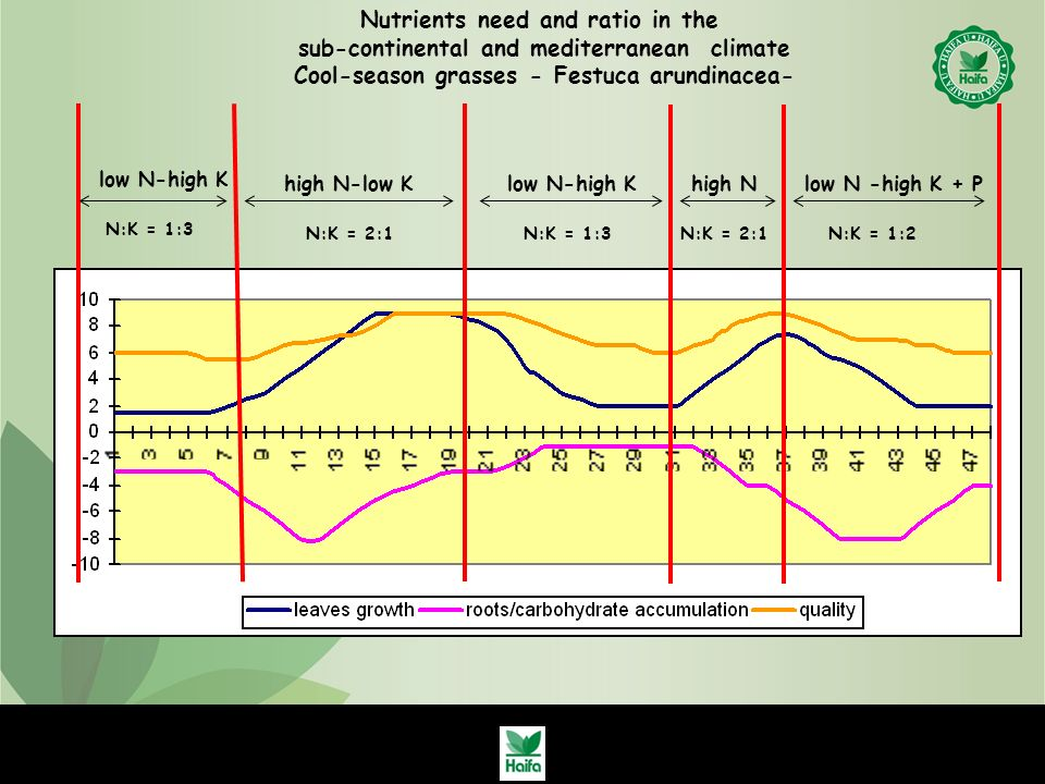 Nutrients need and ratio in the sub-continental and mediterranean climate Cool-season grasses - Festuca arundinacea- low N-high K N:K = 1:3 high N-low K N:K = 2:1 low N-high K N:K = 1:3 high N N:K = 2:1N:K = 1:2 low N -high K + P