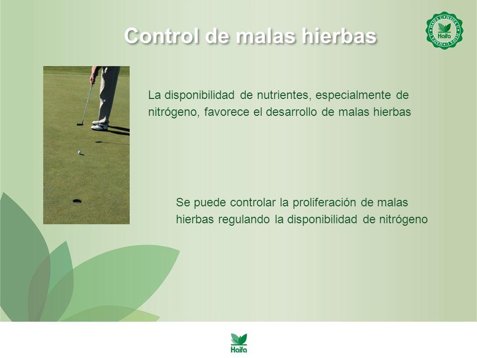 Control de malas hierbas La disponibilidad de nutrientes, especialmente de nitrógeno, favorece el desarrollo de malas hierbas Se puede controlar la proliferación de malas hierbas regulando la disponibilidad de nitrógeno