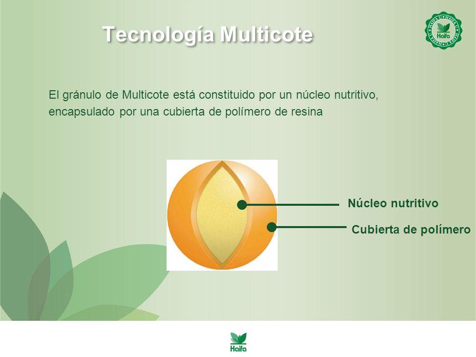 Tecnología Multicote El gránulo de Multicote está constituido por un núcleo nutritivo, encapsulado por una cubierta de polímero de resina Núcleo nutritivo Cubierta de polímero