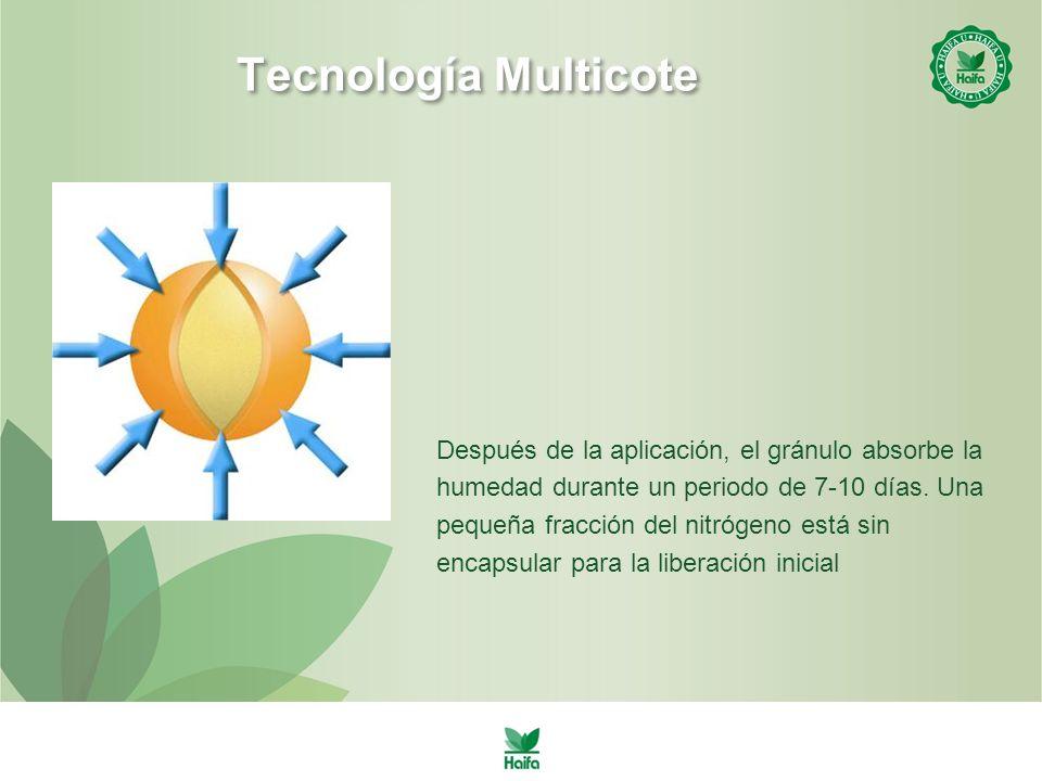 Tecnología Multicote Después de la aplicación, el gránulo absorbe la humedad durante un periodo de 7-10 días.