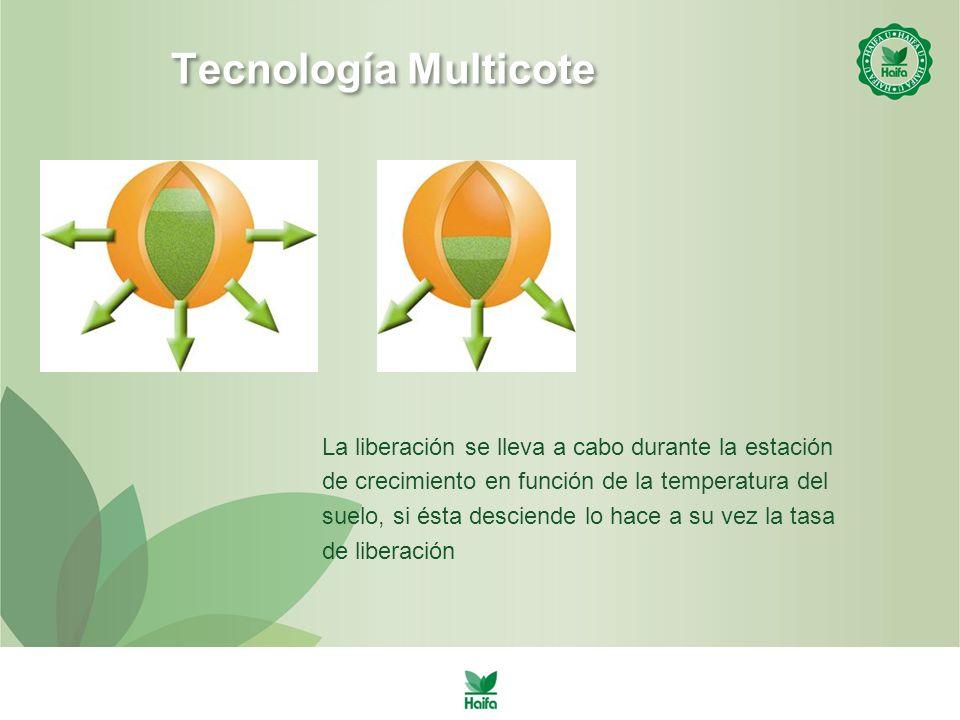 Tecnología Multicote La liberación se lleva a cabo durante la estación de crecimiento en función de la temperatura del suelo, si ésta desciende lo hace a su vez la tasa de liberación