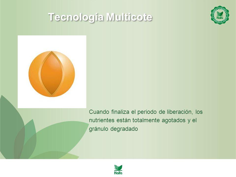 Tecnología Multicote Cuando finaliza el periodo de liberación, los nutrientes están totalmente agotados y el gránulo degradado