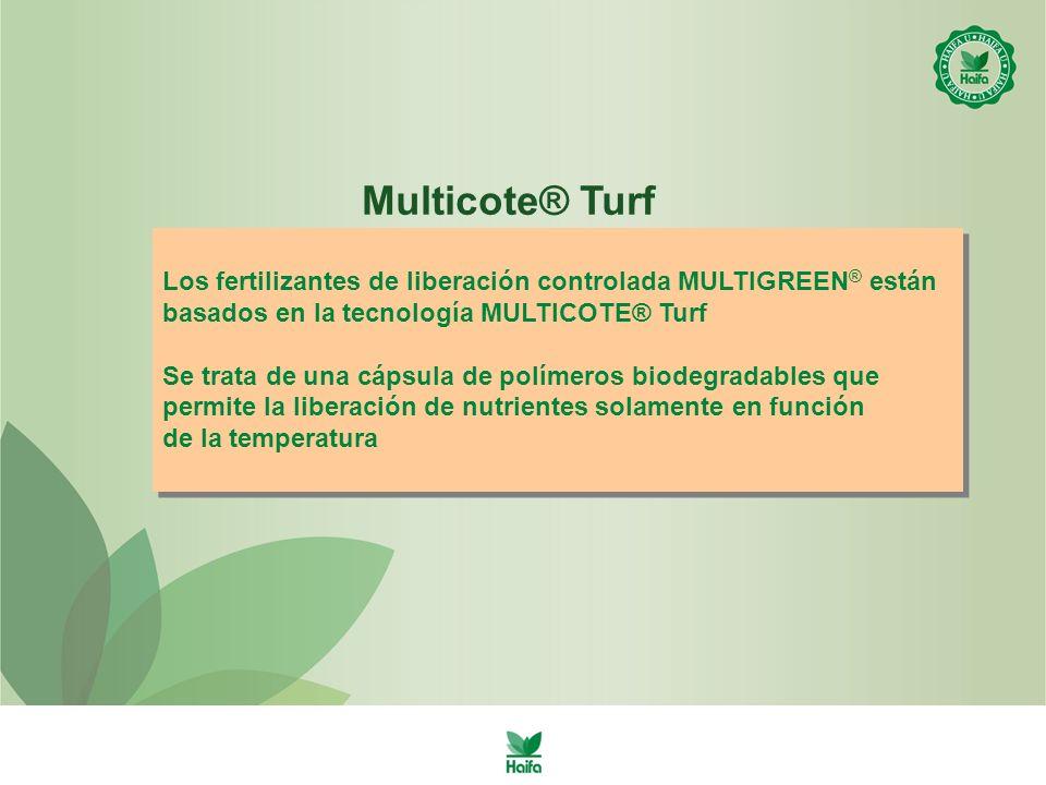 Los fertilizantes de liberación controlada MULTIGREEN ® están basados en la tecnología MULTICOTE® Turf Se trata de una cápsula de polímeros biodegradables que permite la liberación de nutrientes solamente en función de la temperatura Los fertilizantes de liberación controlada MULTIGREEN ® están basados en la tecnología MULTICOTE® Turf Se trata de una cápsula de polímeros biodegradables que permite la liberación de nutrientes solamente en función de la temperatura Multicote® Turf