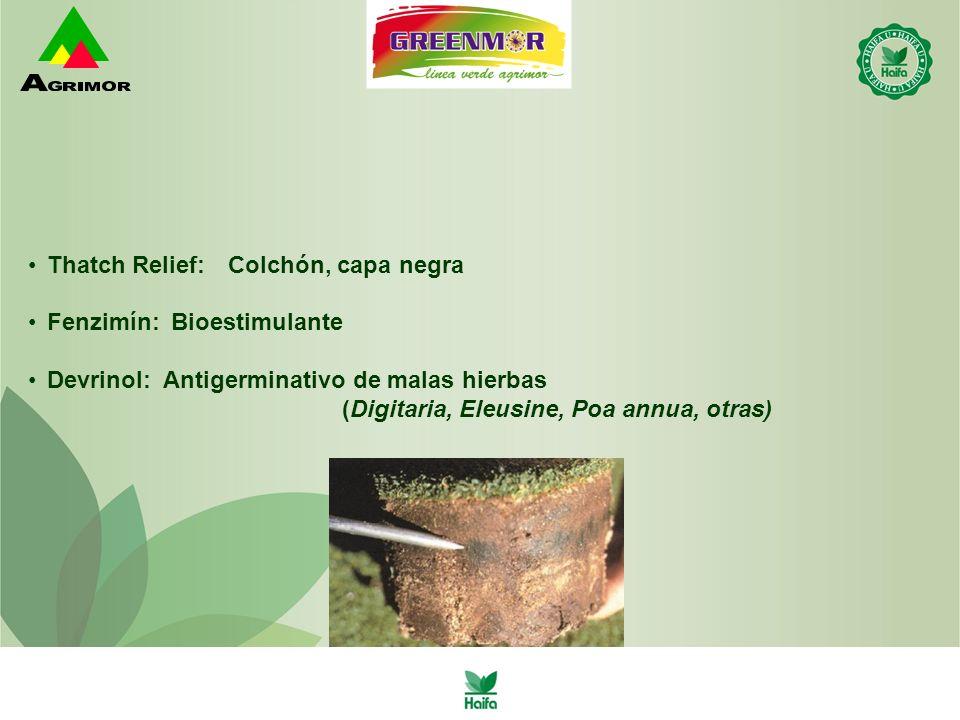Thatch Relief:Colchón, capa negra Fenzimín:Bioestimulante Devrinol: Antigerminativo de malas hierbas (Digitaria, Eleusine, Poa annua, otras)