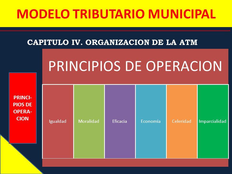 MODELO TRIBUTARIO MUNICIPAL CAPITULO IV. ORGANIZACION DE LA ATM PRINCI- PIOS DE OPERA- CION PRINCIPIOS DE OPERACION IgualdadMoralidadEficaciaEconomíaC