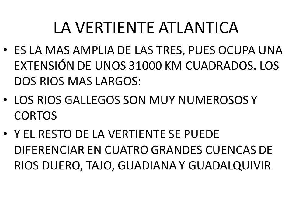 LA VERTIENTE ATLANTICA ES LA MAS AMPLIA DE LAS TRES, PUES OCUPA UNA EXTENSIÓN DE UNOS 31000 KM CUADRADOS. LOS DOS RIOS MAS LARGOS: LOS RIOS GALLEGOS S