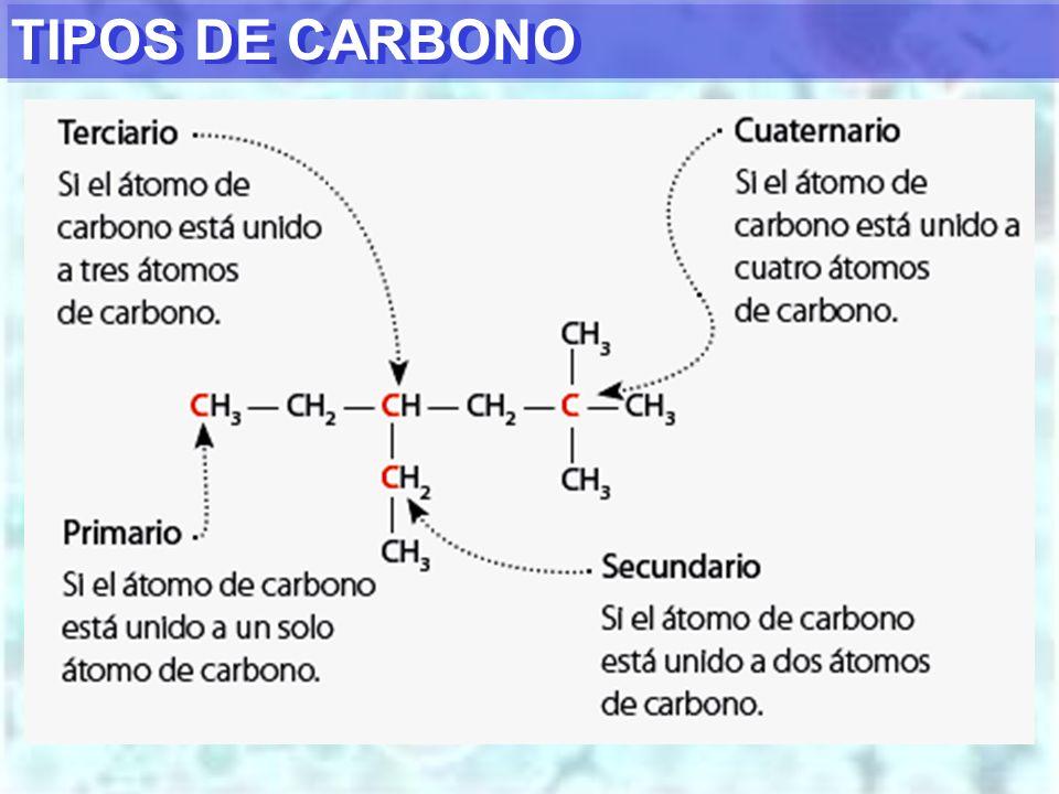 TIPOS DE CARBONO