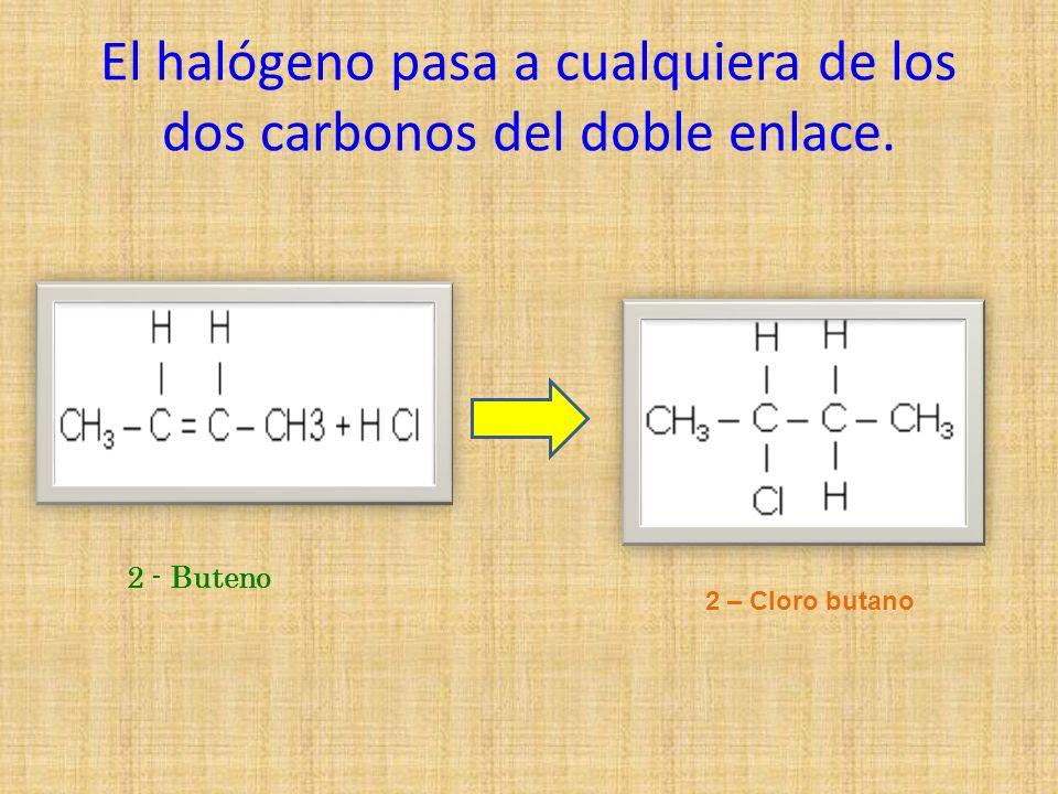 El halógeno pasa a cualquiera de los dos carbonos del doble enlace. 2 - Buteno 2 – Cloro butano