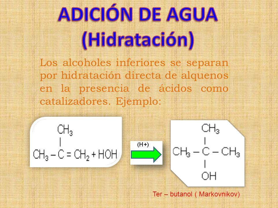 Los alcoholes inferiores se separan por hidratación directa de alquenos en la presencia de ácidos como catalizadores. Ejemplo: Ter – butanol ( Markovn