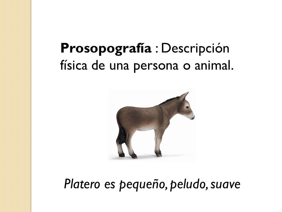 Prosopografía : Descripción física de una persona o animal. Platero es pequeño, peludo, suave