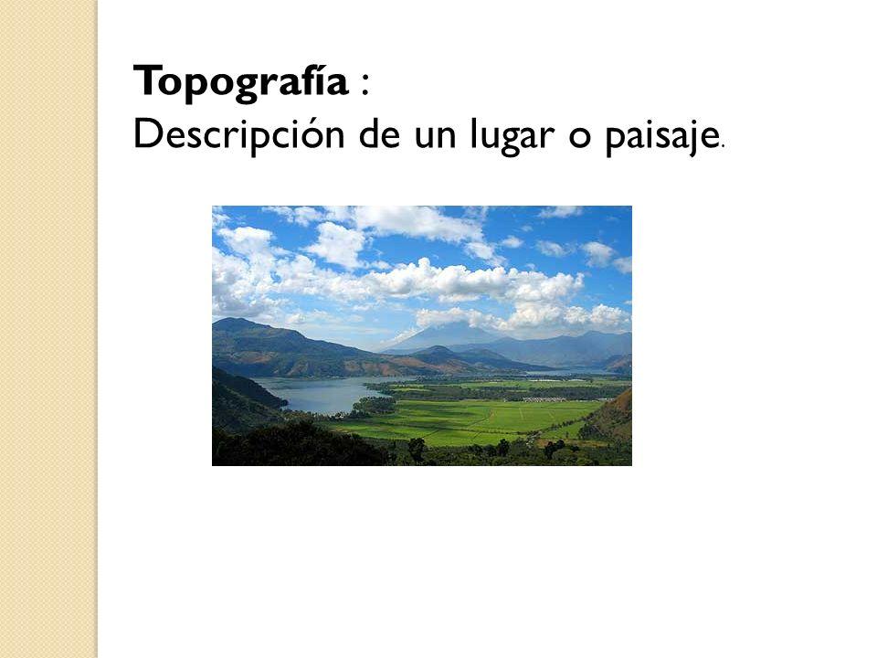 Topografía : Descripción de un lugar o paisaje.