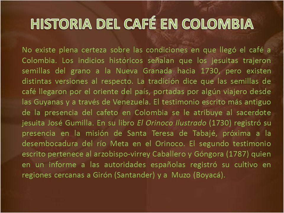 No existe plena certeza sobre las condiciones en que llegó el café a Colombia.