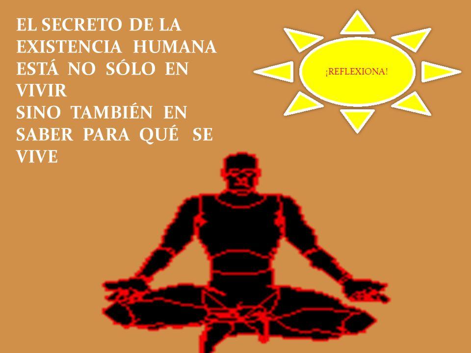 EL SECRETO DE LA EXISTENCIA HUMANA ESTÁ NO SÓLO EN VIVIR SINO TAMBIÉN EN SABER PARA QUÉ SE VIVE ¡REFLEXIONA! ¡REFLEXIONA!