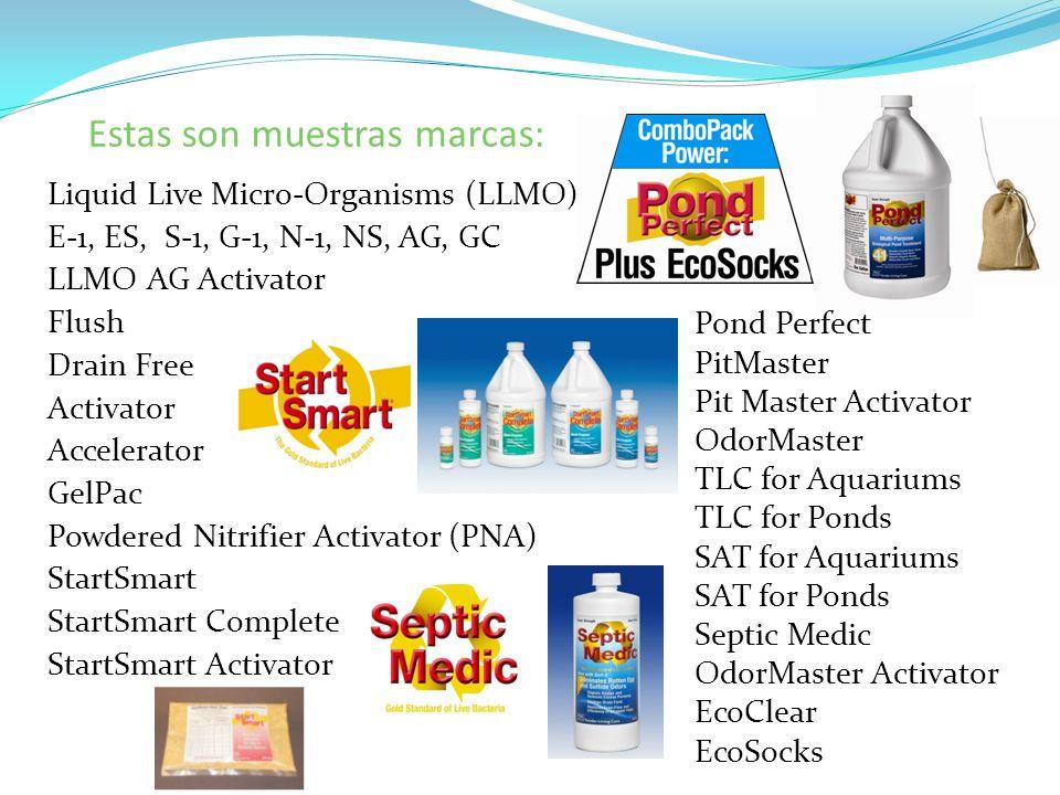 Estas son muestras marcas: Liquid Live Micro-Organisms (LLMO) E-1, ES, S-1, G-1, N-1, NS, AG, GC LLMO AG Activator Flush Drain Free Activator Accelera