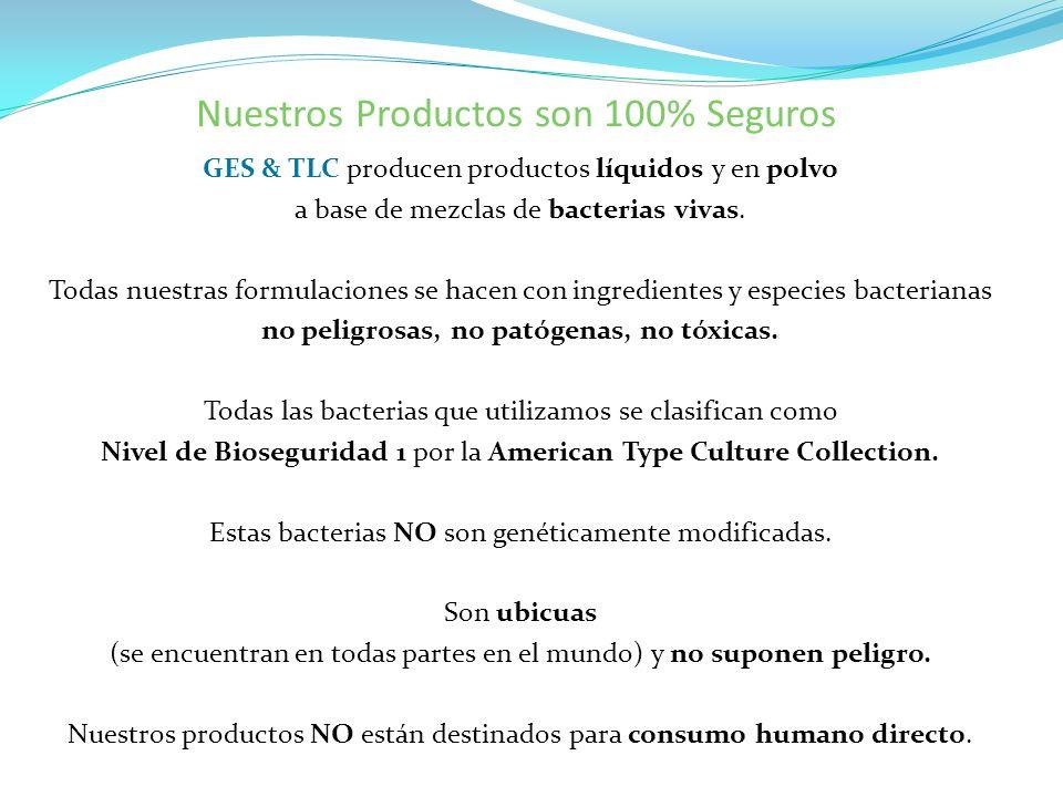 GES & TLC producen productos líquidos y en polvo a base de mezclas de bacterias vivas. Todas nuestras formulaciones se hacen con ingredientes y especi