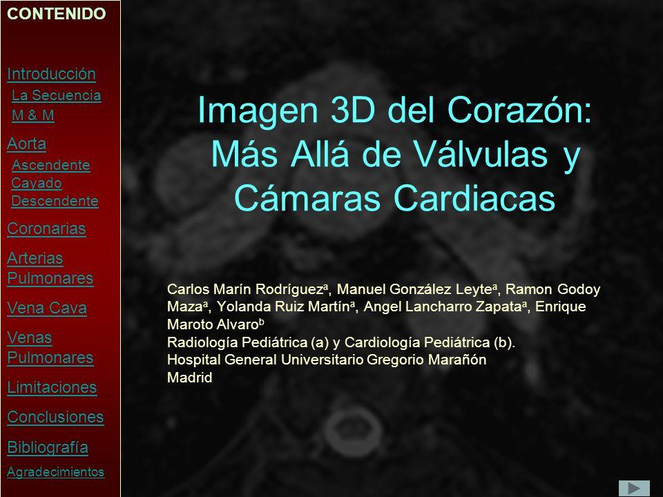 Introducción El objetivo de esta presentación es mostrar la utilidad de la secuencia 3D de Corazón Completo (3DCC) para el estudio de las estructuras vasculares en los pacientes pediátricos con cardiopatías, así como explicar sus limitaciones.