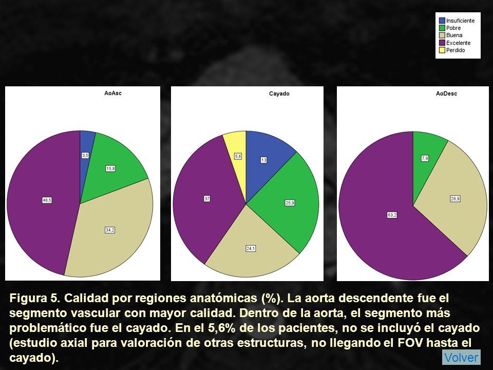 Figura 5.Calidad por regiones anatómicas (%).
