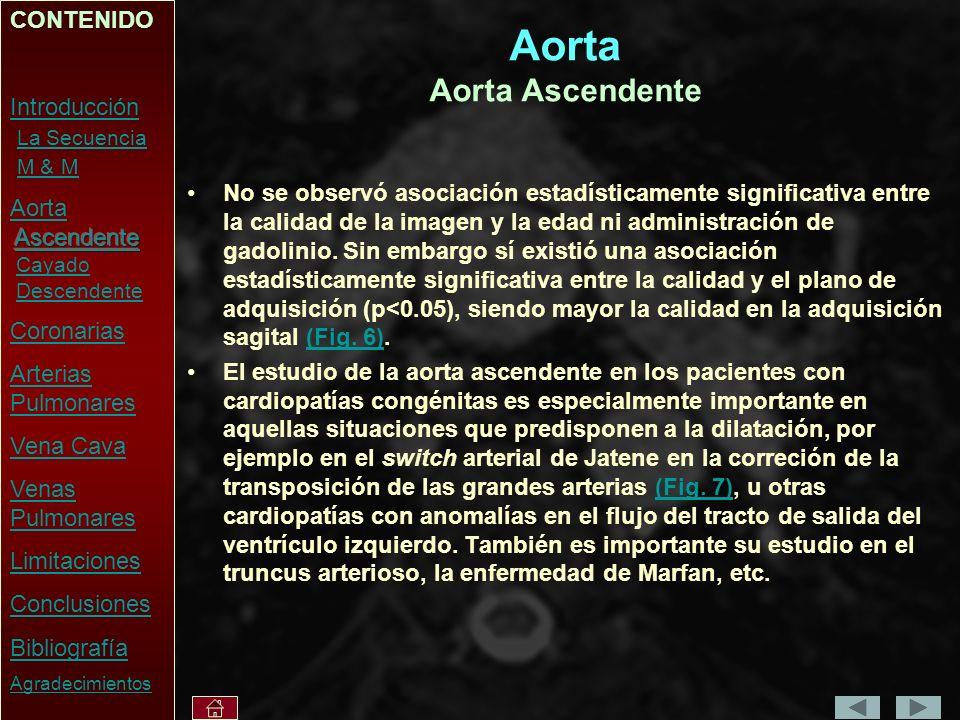 Aorta Aorta Ascendente No se observó asociación estadísticamente significativa entre la calidad de la imagen y la edad ni administración de gadolinio.