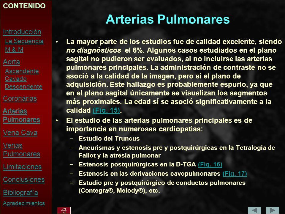 Arterias Pulmonares La mayor parte de los estudios fue de calidad excelente, siendo no diagnósticos el 6%.