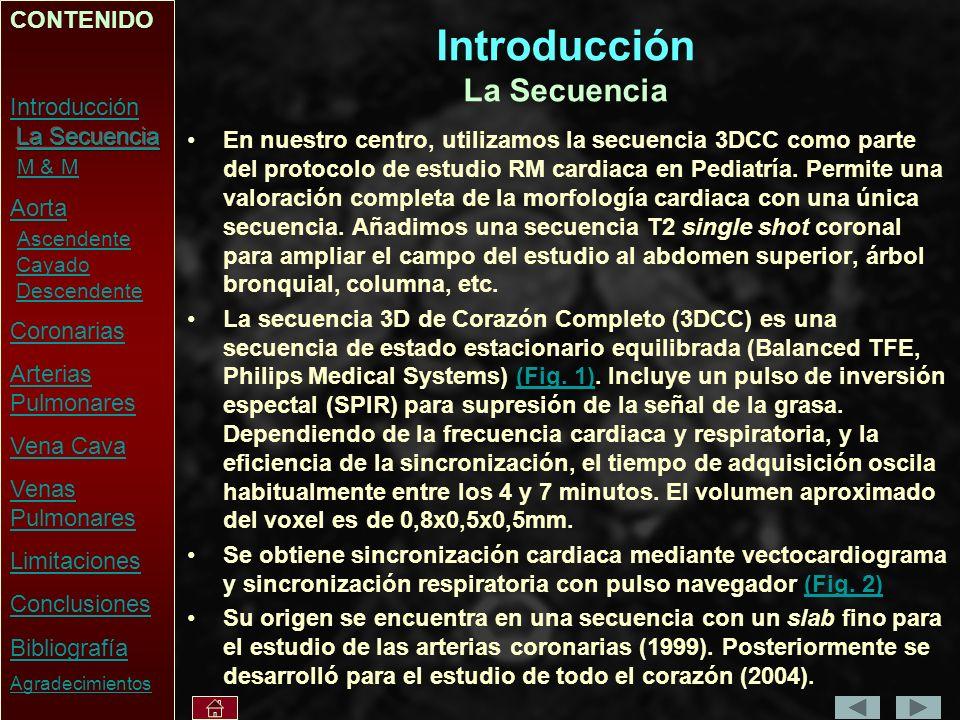Introducción La Secuencia En nuestro centro, utilizamos la secuencia 3DCC como parte del protocolo de estudio RM cardiaca en Pediatría.