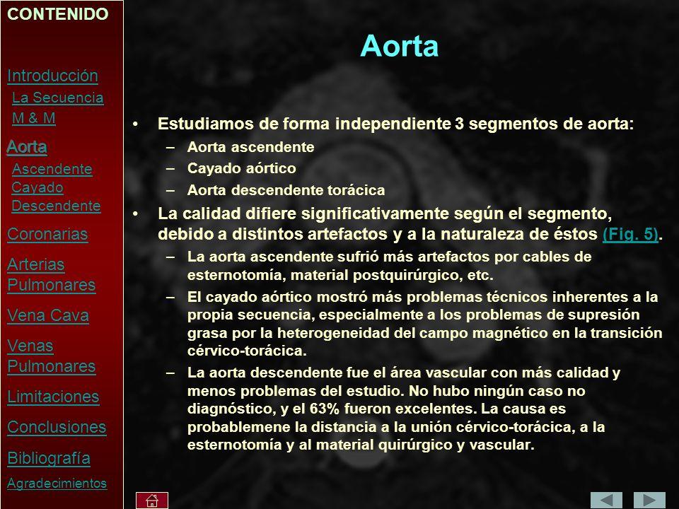 Aorta Estudiamos de forma independiente 3 segmentos de aorta: –Aorta ascendente –Cayado aórtico –Aorta descendente torácica La calidad difiere significativamente según el segmento, debido a distintos artefactos y a la naturaleza de éstos (Fig.