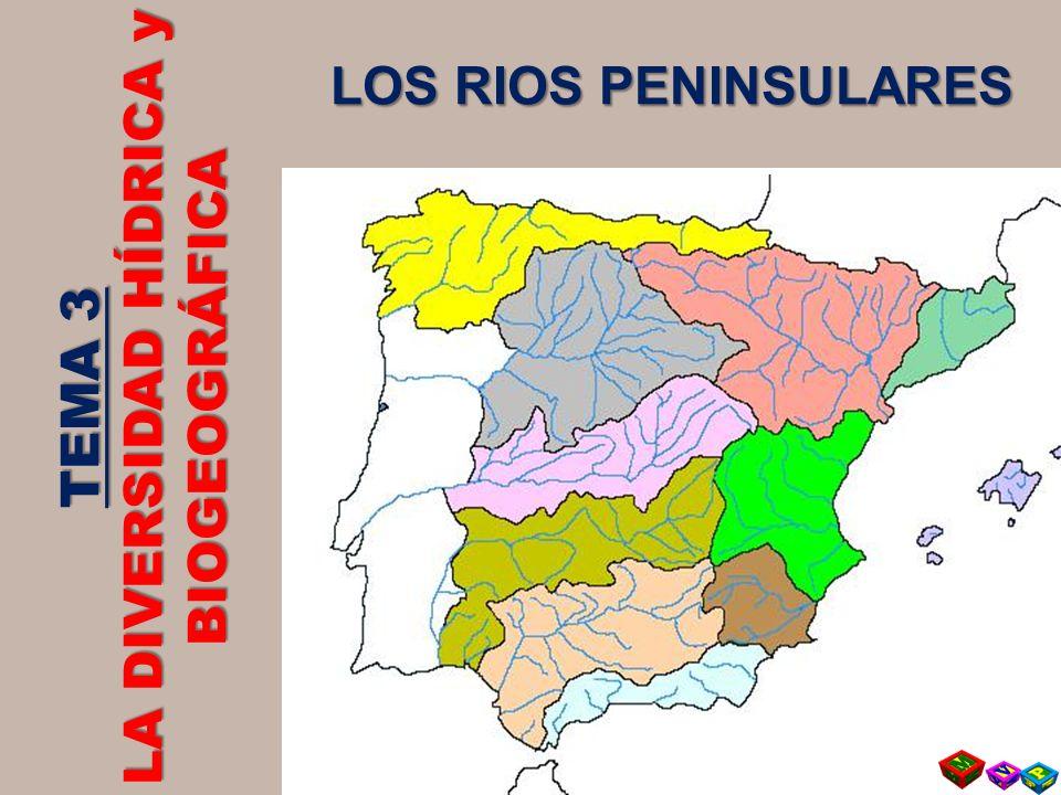 TEMA 3 LA DIVERSIDAD HÍDRICA y BIOGEOGRÁFICA LOS RIOS PENINSULARES
