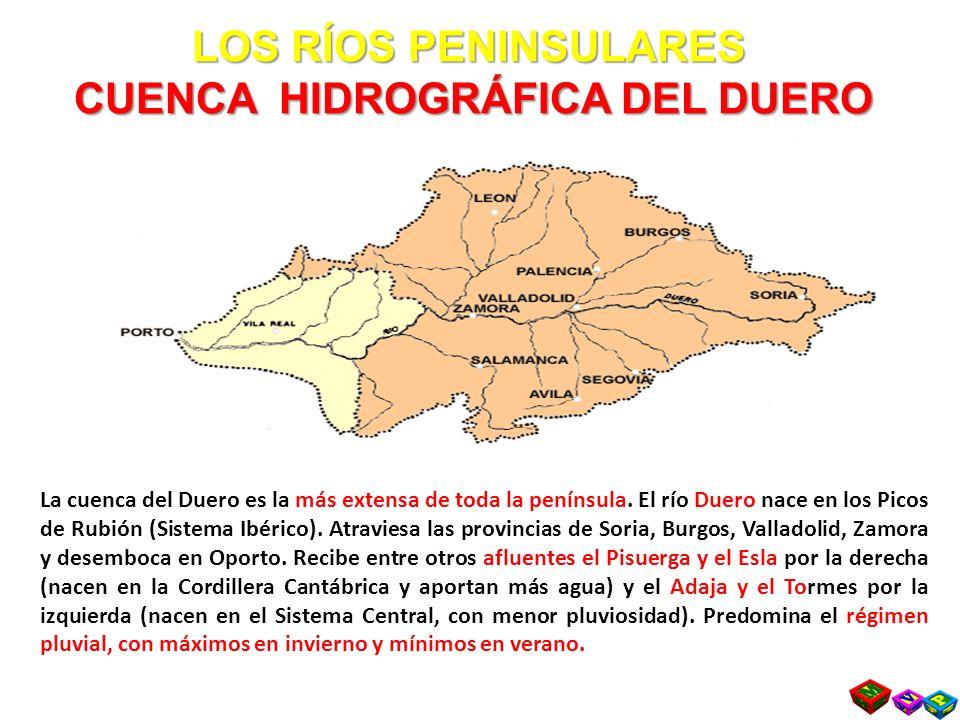 LOS RÍOS PENINSULARES CUENCA HIDROGRÁFICA DEL DUERO La cuenca del Duero es la más extensa de toda la península.