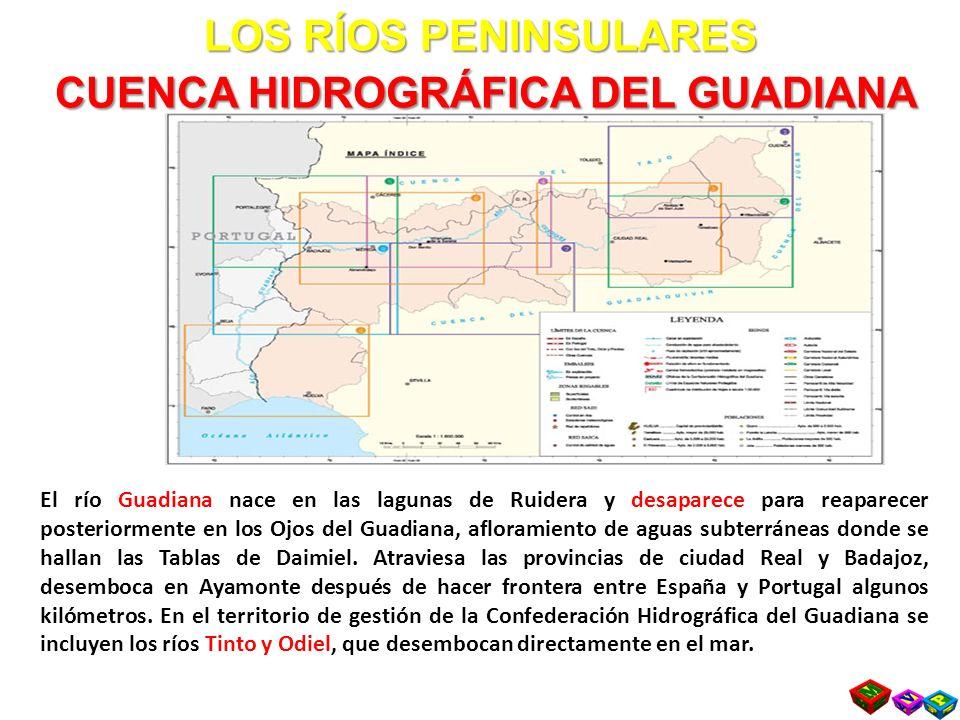 LOS RÍOS PENINSULARES CUENCA HIDROGRÁFICA DEL GUADIANA El río Guadiana nace en las lagunas de Ruidera y desaparece para reaparecer posteriormente en los Ojos del Guadiana, afloramiento de aguas subterráneas donde se hallan las Tablas de Daimiel.