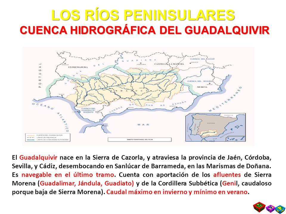 LOS RÍOS PENINSULARES CUENCA HIDROGRÁFICA DEL GUADALQUIVIR El Guadalquivir nace en la Sierra de Cazorla, y atraviesa la provincia de Jaén, Córdoba, Sevilla, y Cádiz, desembocando en Sanlúcar de Barrameda, en las Marismas de Doñana.