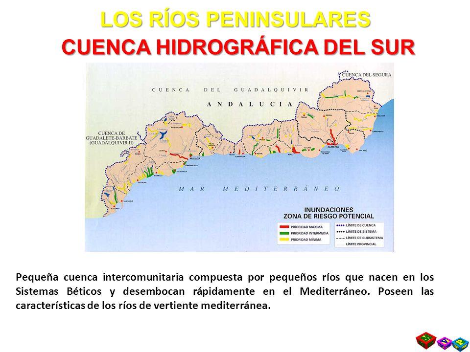 LOS RÍOS PENINSULARES CUENCA HIDROGRÁFICA DEL SUR Pequeña cuenca intercomunitaria compuesta por pequeños ríos que nacen en los Sistemas Béticos y desembocan rápidamente en el Mediterráneo.